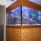 Akvaarium